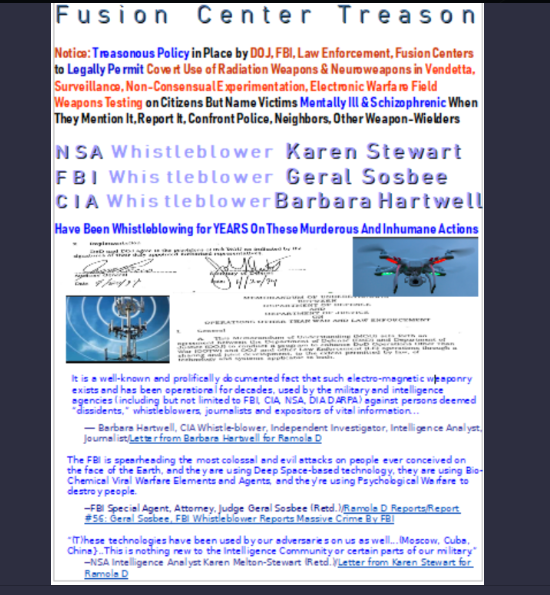 NSA Whistleblower, Karen Stewart: Synopsis of the Silent Holocaust